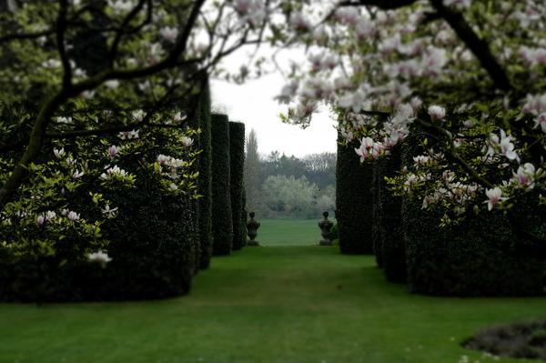 projekt ogrodu w Toruniu