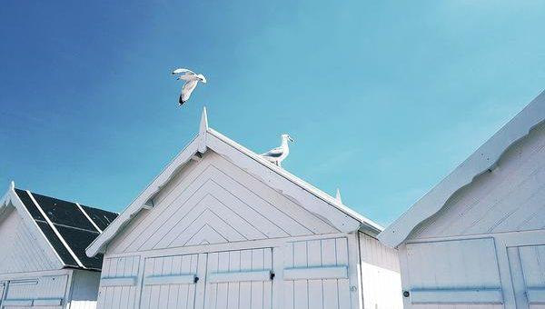 Jak wygląda profesjonalnie pomalowany dach