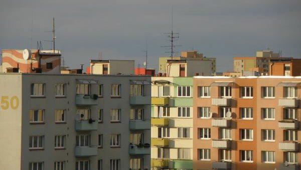 Czym zajmuje się zarządca wspólnoty mieszkaniowej?